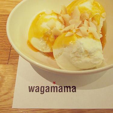 waga2